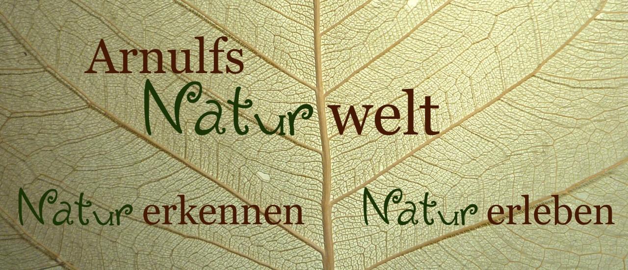 Arnulfs Naturwelt