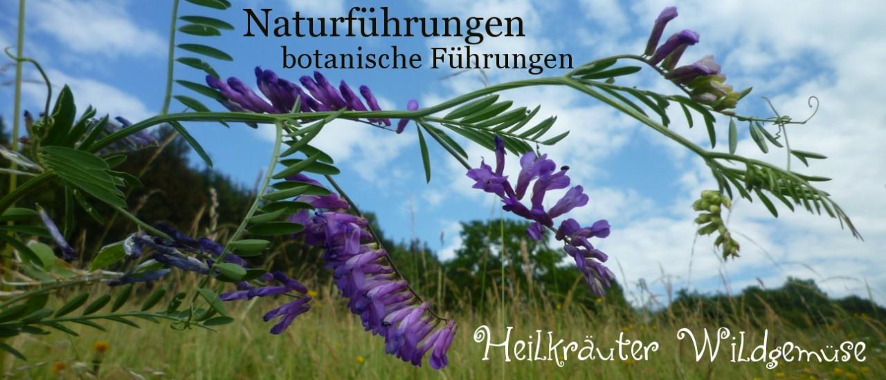 Naturführungen und botanische Führungen
